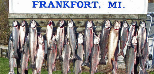 Sport Fishing Frankfort Michigan