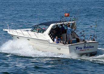 Lake michigan sport fishing tiny bubbles charters for Best fishing in michigan