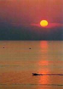 Lake Michigan Sport Fishing Company